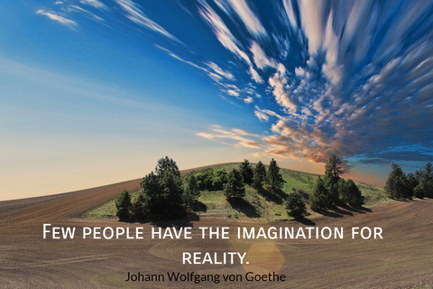 few people have the imagination for reality...