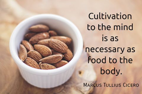 cultivation to the mind is as necessary as food to the body...