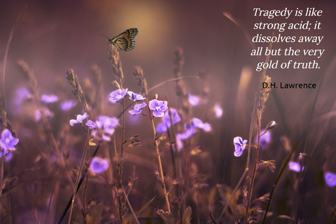 1560803196406-tragedy-is-like-strong-acid-it-dissolves-away-all-but-the-very-gold-of-truth.jpg
