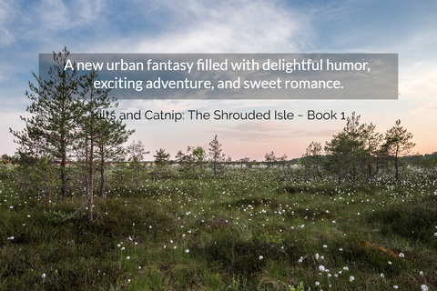 1561244807958-a-new-urban-fantasy-filled-with-delightful-humor-exciting-adventure-and-sweet-romance.jpg