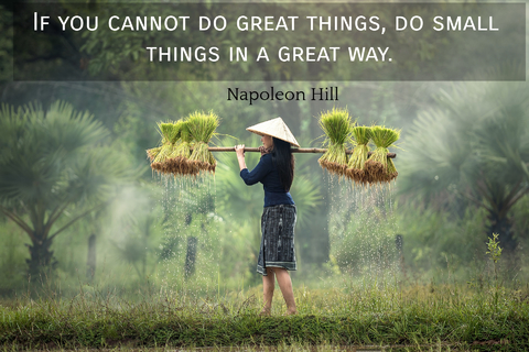 if you cannot do great things do small things in a great way...