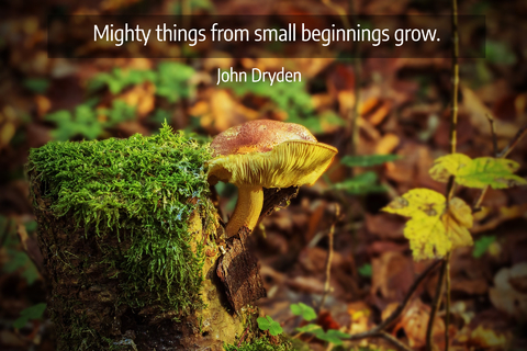 mighty things from small beginnings grow...