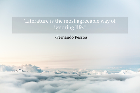 literature is the most agreeable way of ignoring life...