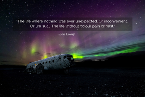 the life where nothing was ever unexpected or inconvenient or unusual the life without...