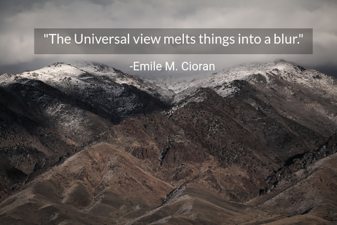 the universal view melts things into a blur...