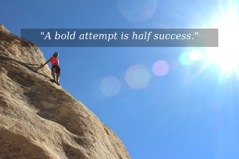a bold attempt is half success...
