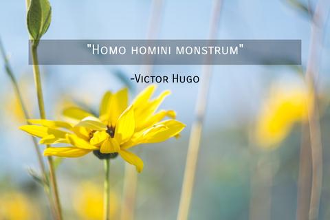 homo homini monstrum...