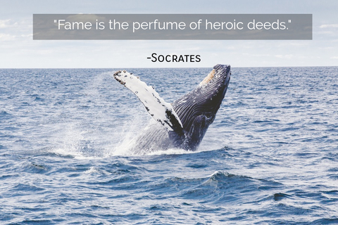 fame is the perfume of heroic deeds...