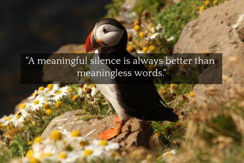 a meaningful silence is always better than meaningless words...