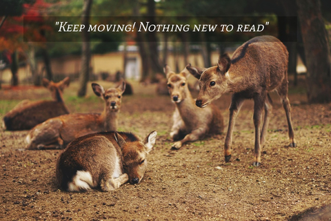 keep moving nothing new to read...
