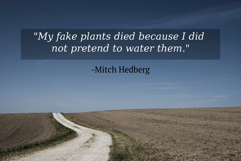 my fake plants died because i did not pretend to water them...