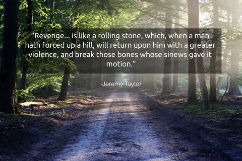revenge is like a rolling stone which when a man hath forced up a hill will return...