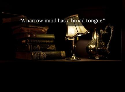a narrow mind has a broad tongue...