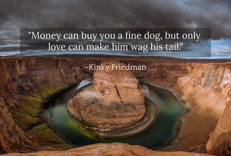 money can buy you a fine dog but only love can make him wag his tail...