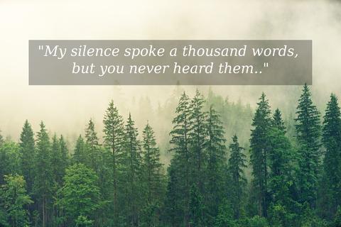 my silence spoke a thousand words but you never heard them...