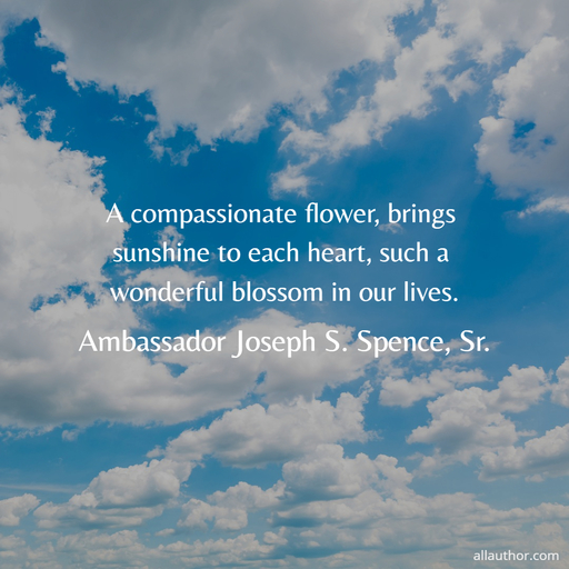 1575118029173-a-compassionate-flower-brings-sunshine-to-each-heart-such-a-wonderful-blossom-in-our.jpg