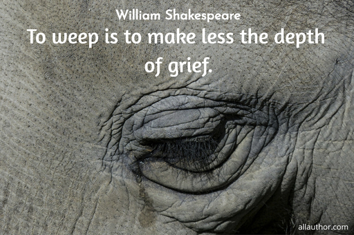 to weep is to make less the depth of grief...