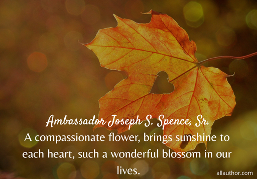 a compassionate flower brings sunshine to each heart such a wonderful blossom in our...