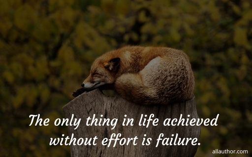 the only thing in life achieved without effort is failure...