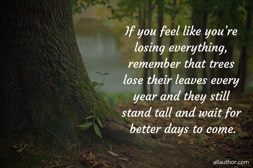 if you feel like youre losing everything remember that trees lose their leaves every...