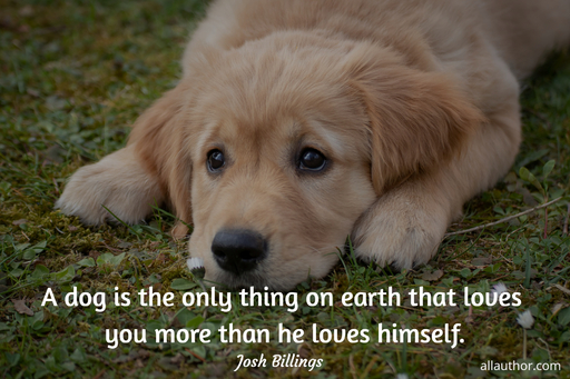 a dog is the only thing on earth that loves you more than he loves himself...