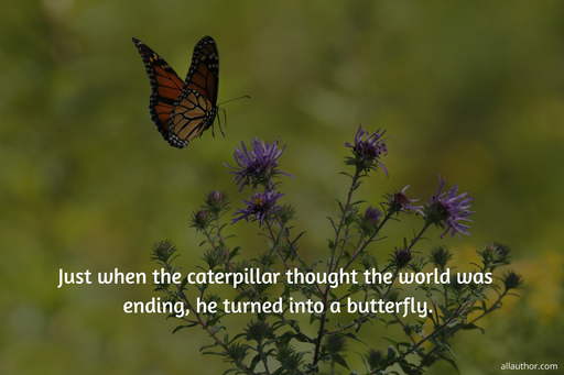 just when the caterpillar thought the world was ending he turned into a butterfly...