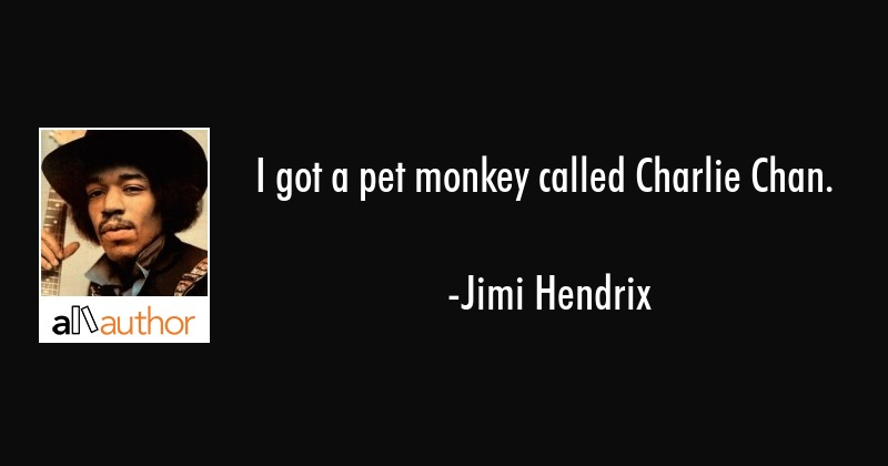 I got a pet monkey called Charlie Chan. - Quote